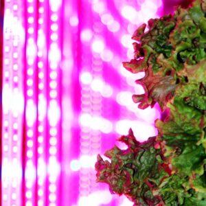 LED-03-198-870x870